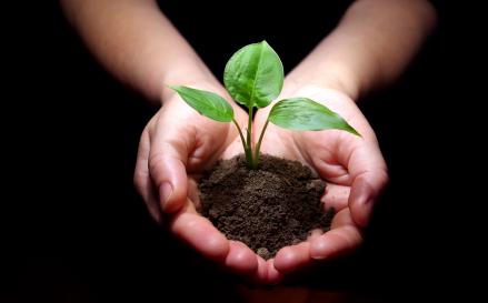 Svetski dan zemljišta